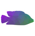 silhouette of fish abstraction low poly style vector image vector image