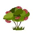 Tree nature green vector image