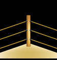 boxing ring with brown ropes vector image vector image