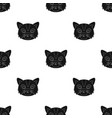 cat muzzle icon in black style isolated on white vector image vector image