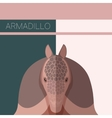 Flat postcard with Armadillo vector image vector image