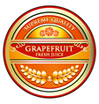Grapefruit Juice Label vector image vector image