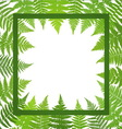 Jungle poster Fern frond background vector image vector image