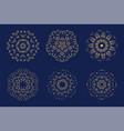 mandala burst lined vintage shapes vector image