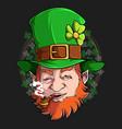 st patrick leprechaun face smoking pipe vector image vector image