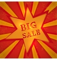 Star with text big sale vector image