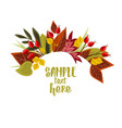 autumn leaves with rose hip vector image vector image