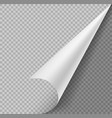 curled corner paper blank page or sticker vector image