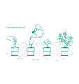 growing phases of potted plant - seeding vector image