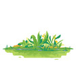 jungle plants green composition vector image vector image
