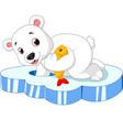 polar bear is fishing vector image vector image