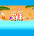 realistic starfish with various color or summer vector image vector image