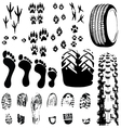 animal and human foot prints vector image
