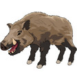 cartoon brown boar vector image