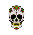 color skull with yellow teeth vector image