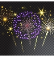 Coloured firework isolated on transparent vector image