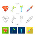 isolated object of and logo collection of vector image vector image