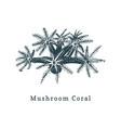 mushroom coral drawing of sea vector image vector image