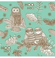 owls hooting vector image