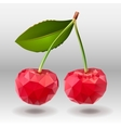 Polygonal red cherry berries with green leaves vector image vector image