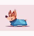 dog character best friend cartoon vector image