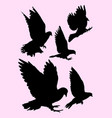 pigeon dove detail silhouette 04 vector image vector image