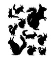 squirrel silhouette vector image vector image