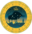 taurus signs of the zodiac vector image vector image