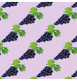 Background seamless pattern with black grape vector image