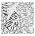 Best Home Remedies Word Cloud Concept vector image vector image
