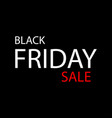 black friday sale banner or poster vector image vector image
