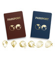 passports international id and golden navigation vector image vector image