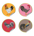 roosters stickers vector image