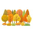 autumn forest trees autumnal garden yellow tree vector image vector image