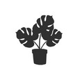 black hand drawn monstera in pot silhouette vector image vector image