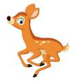 cute little deer cartoon running vector image vector image