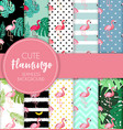 cute retro seamless flamingo pattern collection vector image