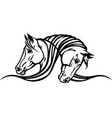 heads two horses vector image vector image