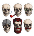 human skull bones with sunglasses beard vector image