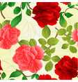 seamless texture rose pink and red vector image
