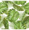 Tropial leaves pattern