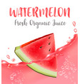 watermelon juice fresh fruit 3d icon vector image