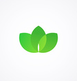 Green sign with three leafs vector image