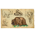 Animals theme BEARS - hand drawn pack vector image vector image