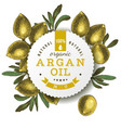 argan oil label with hand drawn nuts vector image vector image
