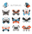 color butterflies and moths vector image vector image