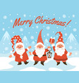 gnomes christmas characters festive winter poster vector image