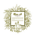 olive oil sketch poster vector image vector image