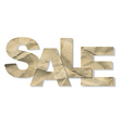 Paper Sale Text vector image vector image