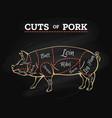 pig butcher chalkboard scheme vector image